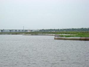 Gulf Fence Island